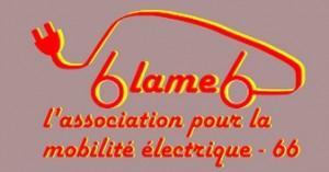 Association de voiture électrique